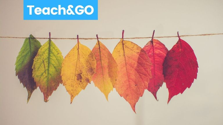11 Excellent Fall Decoration Ideas For Your Class Teach And Go